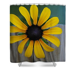 Black Eye Shower Curtain by Eric Liller