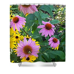 Black Eye Susans And Echinacea Shower Curtain by Eric  Schiabor