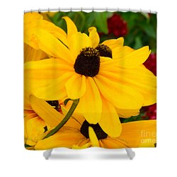 Shower Curtain featuring the digital art Black-eyed Susan Floral by Mas Art Studio