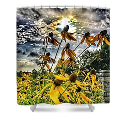 Black Eyed Susan Shower Curtain