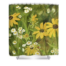 Shower Curtain featuring the painting Black-eyed Susans In A Field by Laurie Rohner