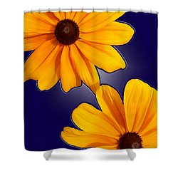 Black-eyed Susans On Blue Shower Curtain by Tara Hutton