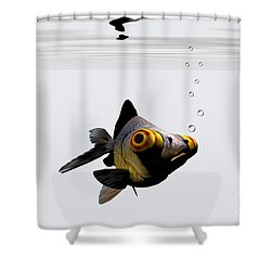 Black Goldfish Shower Curtain by Corey Ford