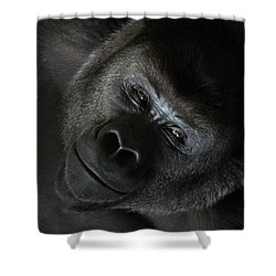 Black Gorilla Smile Shower Curtain