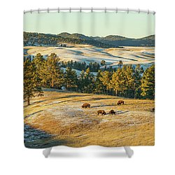 Black Hills Bison Before Sunset Shower Curtain by Bill Gabbert