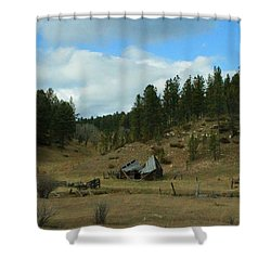 Black Hills Broken Down Cabin Shower Curtain