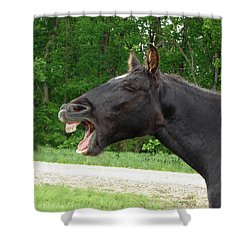 Shower Curtain featuring the digital art Black Horse Laughs by Jana Russon