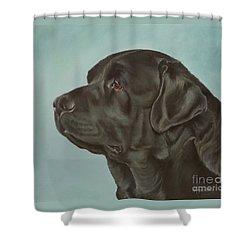 Black Labrador Dog Profile Painting Shower Curtain