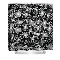 Black Lace Abstract Shower Curtain