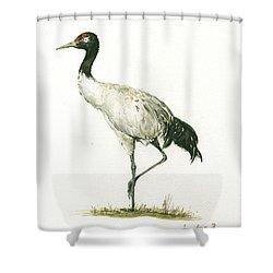 Black Necked Crane Shower Curtain