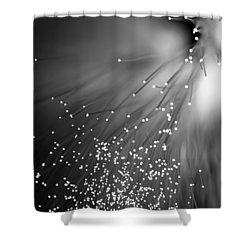Black Night Shower Curtain by Dazzle Zazz