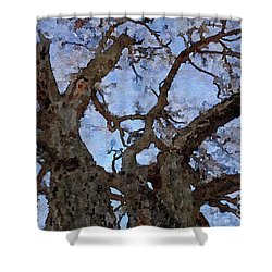 Shower Curtain featuring the painting Black Oaks by Mark Greenberg