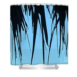 Black Palms On Blue Sky Shower Curtain