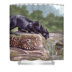 Black Panther And Jaguar Shower Curtain