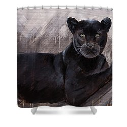 Black Panther  Shower Curtain by Gray Artus