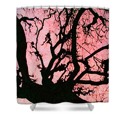 Shower Curtain featuring the photograph Black Paris by Patricia Arroyo