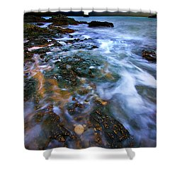 Black Point Light Shower Curtain by Meirion Matthias