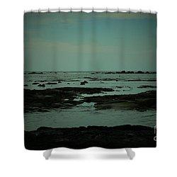 Black Rock Beach Shower Curtain by Mini Arora