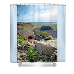 Black Sampson In The Badlands Shower Curtain