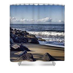 Black Sand Beach  Shower Curtain by Douglas Barnard