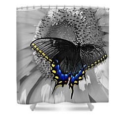 Black Swallowtail And Sunflower Color Splash Shower Curtain