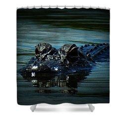 Black Water Shower Curtain