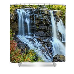 Black Water Falls #3 Shower Curtain
