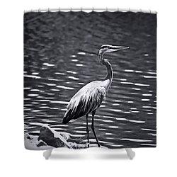 Black/white  Heron Shower Curtain