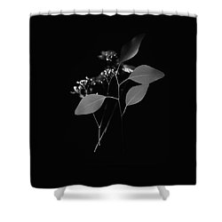 Floating Black And White Shower Curtain