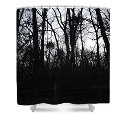 Shower Curtain featuring the photograph Black Woods by Don Koester