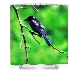 Blackbird Shower Curtain by Bill Cannon