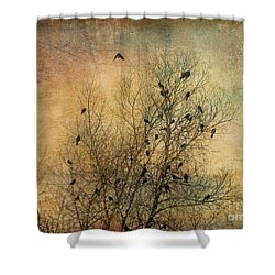 Blackbird Congregation Shower Curtain by Dee Flouton