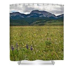 Blackleaf Canyon Shower Curtain
