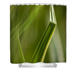 Blades Abstract 3 Shower Curtain by Mike Reid