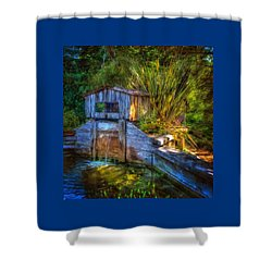Shower Curtain featuring the photograph Blakes Pond House by Thom Zehrfeld