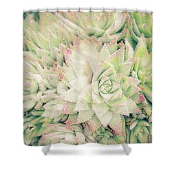 Shower Curtain featuring the photograph Blanket Of Succulents by Ana V Ramirez