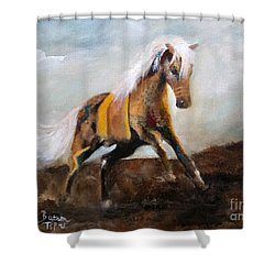 Blanket The War Pony Shower Curtain