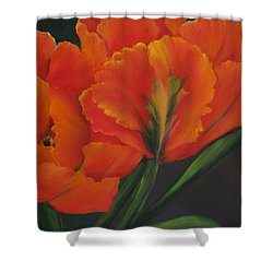 Blaze Of Glory Shower Curtain