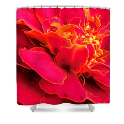 Blazing Pink Marigold Shower Curtain