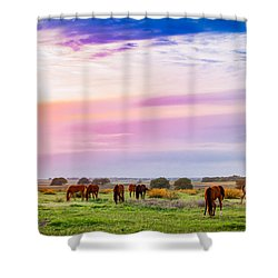 Blazing Sky Diner Shower Curtain