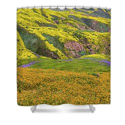 Blazing Star On Temblor Range Shower Curtain by Marc Crumpler