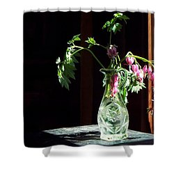 Bleeding Heart Bouquet Shower Curtain by Joy Nichols