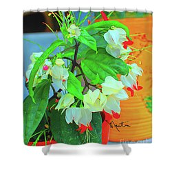 Bleeding Heart II Shower Curtain