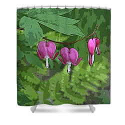 Bleeding Hearts 2 Shower Curtain