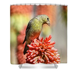 Blending In Shower Curtain by Donna Kennedy