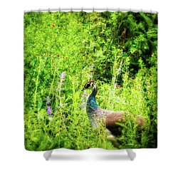 Blending In Shower Curtain by Wim Lanclus
