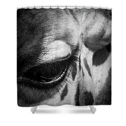 Blink Of An Eye Shower Curtain
