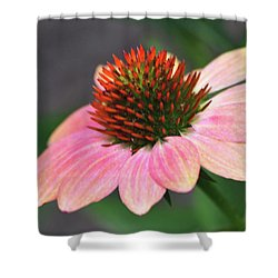 Blissful Bloom Shower Curtain