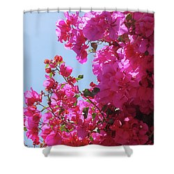 Blissful Fuchsia Shower Curtain