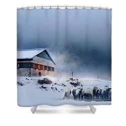 Blizzard Bliss Shower Curtain
